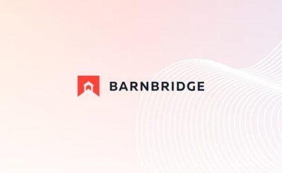 BarnBridge Review
